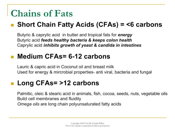 Length of Fatty Acid Chain