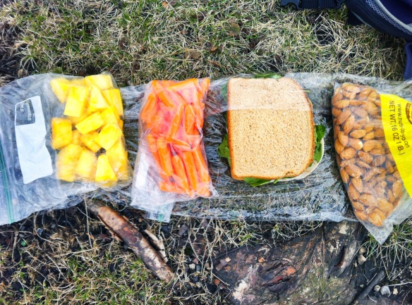 Diabetic Lunch in the Park