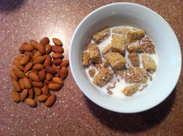 Quick Diabetic Breakfast